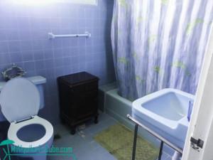 620x465-vedado-bathroom-lupe-1
