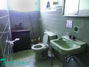 620x465-vedado-bathroom-lupe